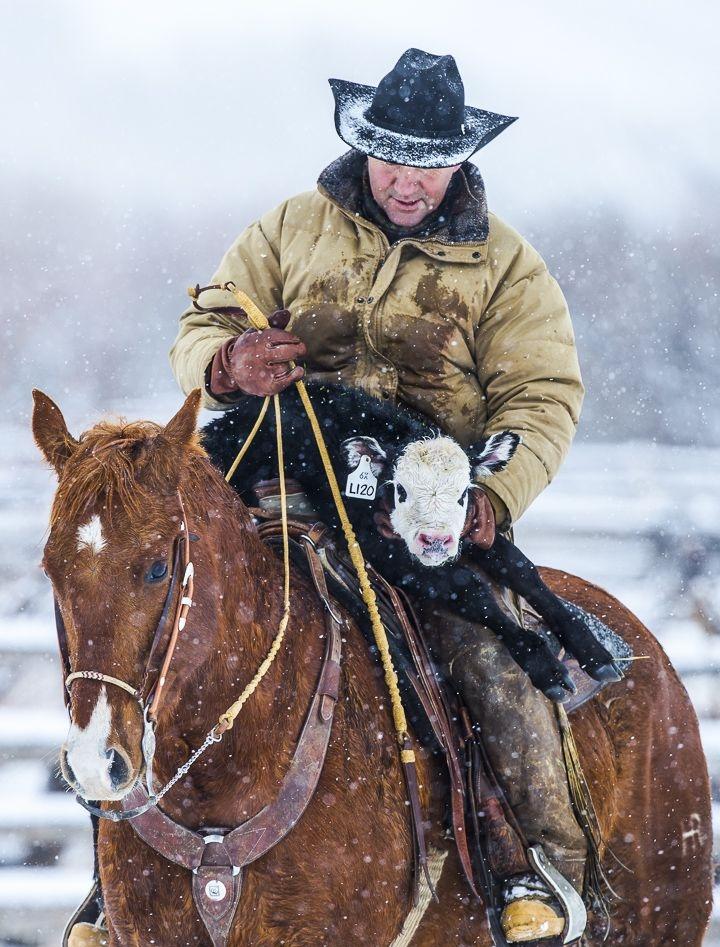 31a2ab85b823f662babc5a8713fd9bad--cowboy-pics-cowboy-pictures